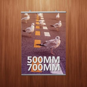 Poster Fast Set 21mm